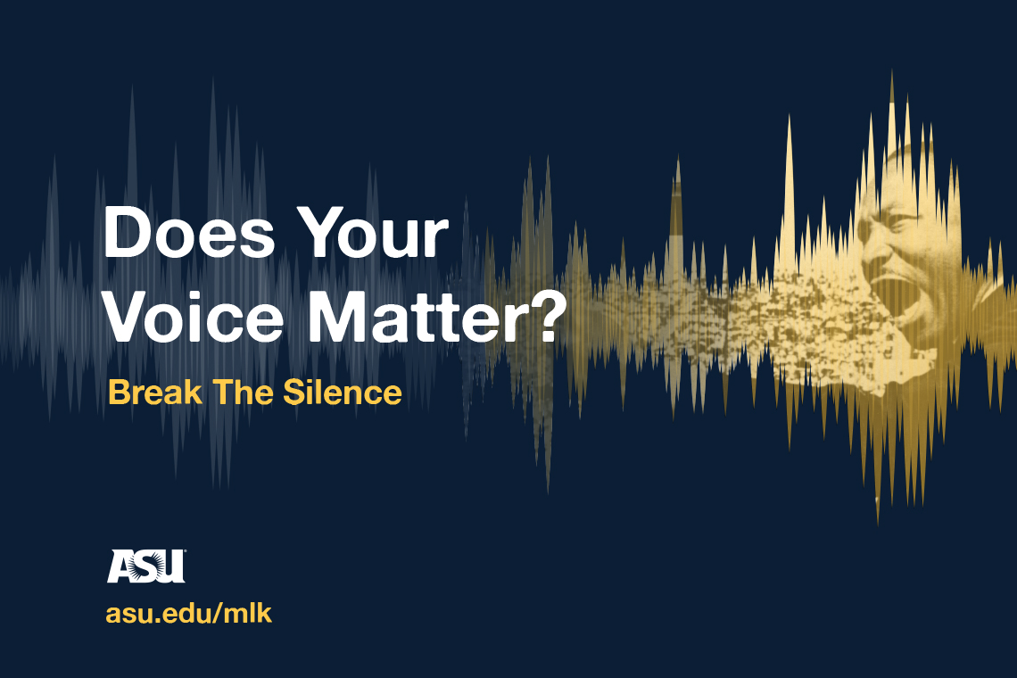 Does Your Voice Matter